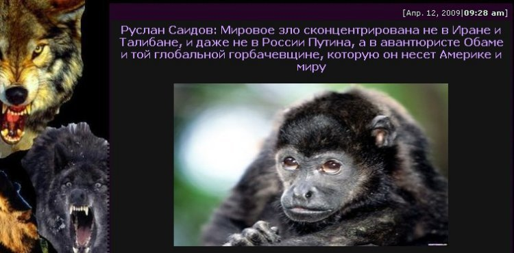 [Image: ape.jpg]