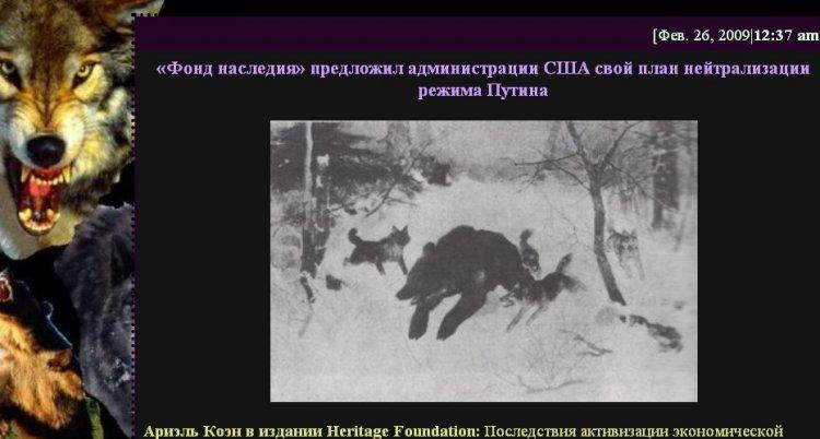 [Image: bear.jpg]